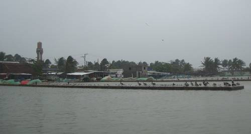 Vista del sistema lagunar del poblado costeño de Sánchez Magallanes, municipio de Cárdenas, Tabasco, donde los restos de una plataforma marina de Pemex desmantelada en 1998 aún ocasionan pérdidas y daños a los pescadoresFoto René Alberto López