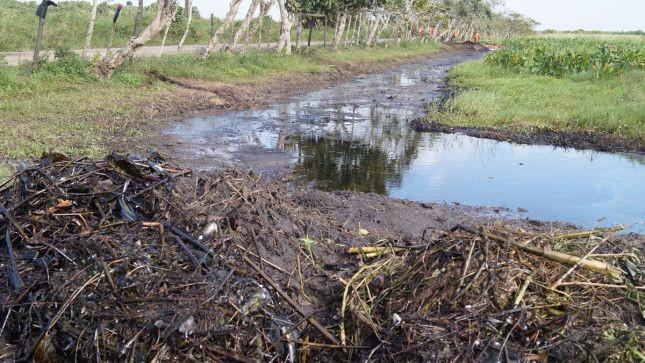(Tabasco HOY) A 10 km de la Cangrejera está el ejido 'Aquiles Serdán' con un ecosistema destruido.