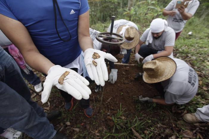 Promete CEAV más apoyo al Colectivo Solecito para la búsqueda de desaparecidos en Veracruz