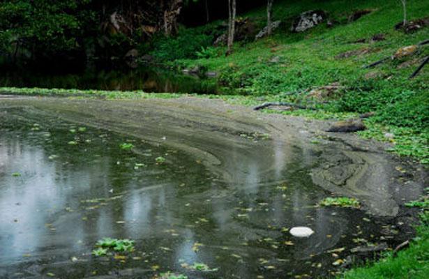 Contaminadas, totalidad de costas y cuencas de Veracruz: Lavida