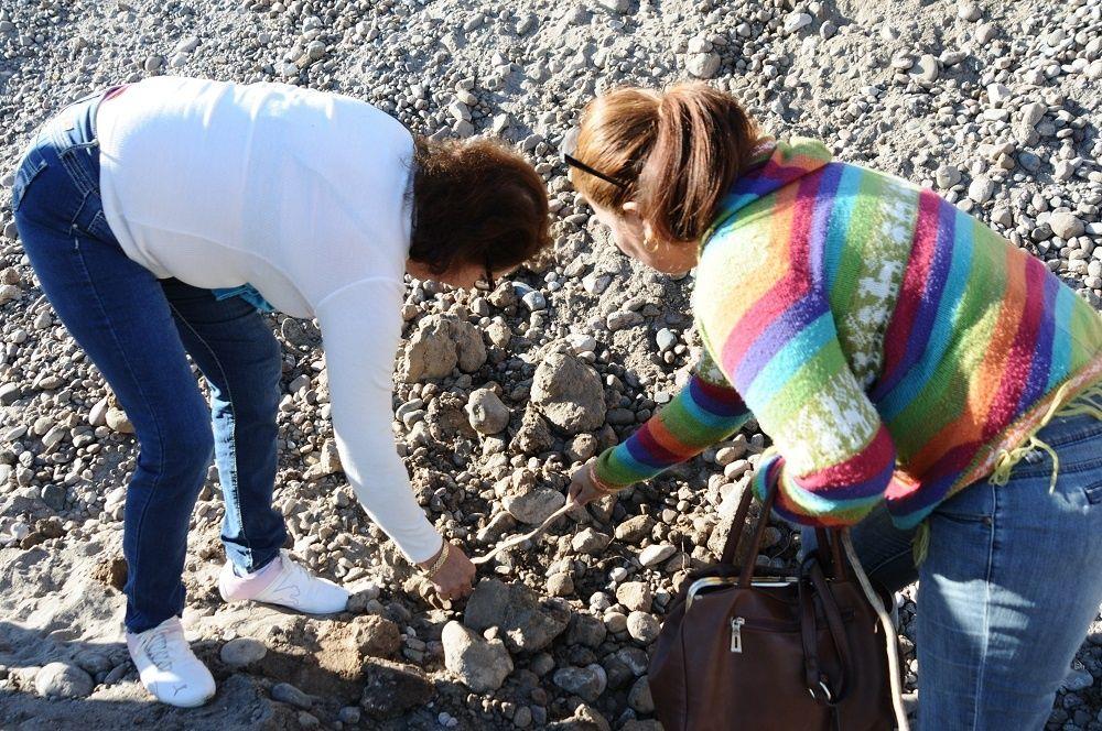 Piden protección para mujer rastreadora en Sinaloa