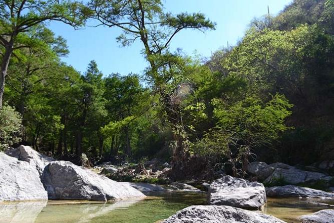 Destrucción de la Sierra del Tentzo, una amenaza potencialmente abierta (Puebla)