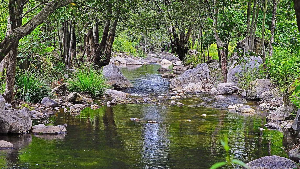 Yavesía defiende agua y la vida; amenaza minera en territorio juarista (Oaxaca)