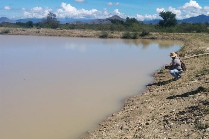 Incertidumbre, tras derrame minero en arroyo de Magdalena Ocotlán (Oaxaca)