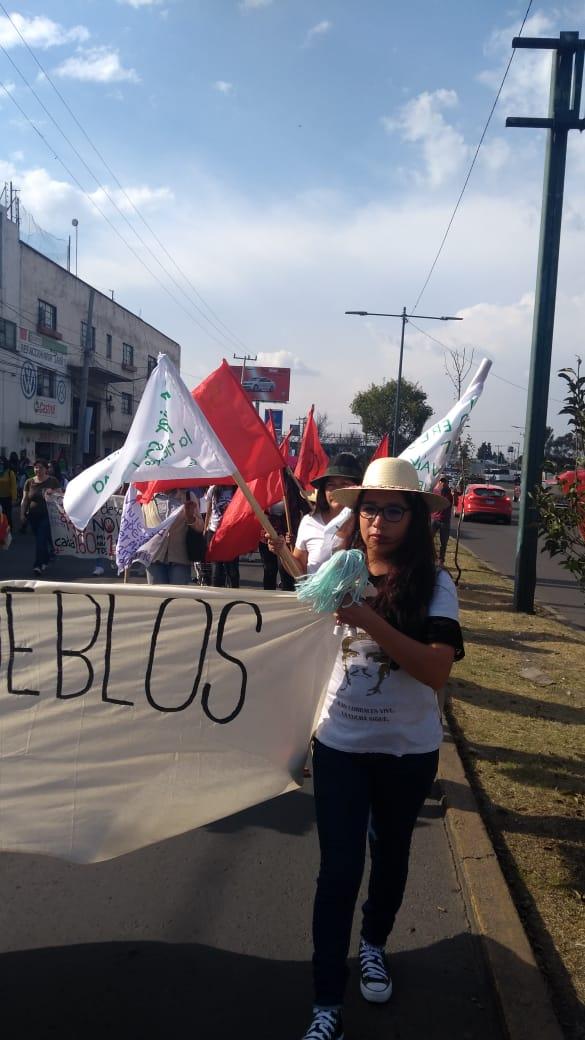 Marchan en Toluca exigiendo equidad, igualdad y alto a la violencia