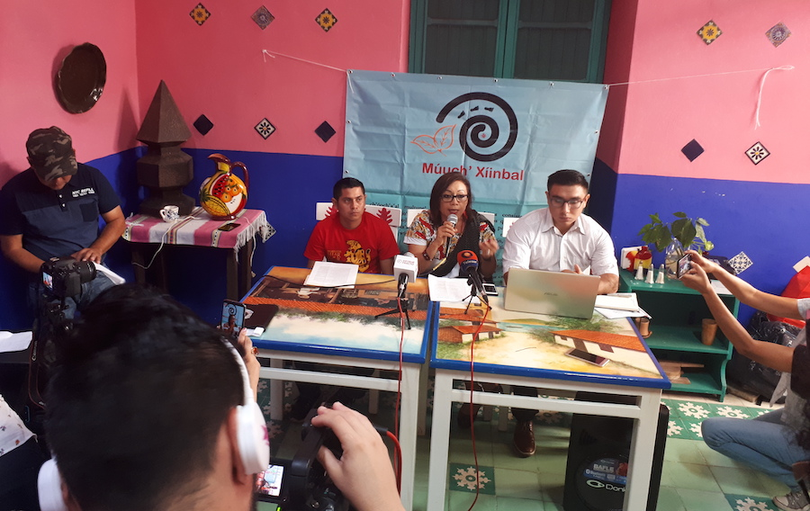 Juez frena un parque solar en Yucatán y ampara el territorio de mayas y de jaguares