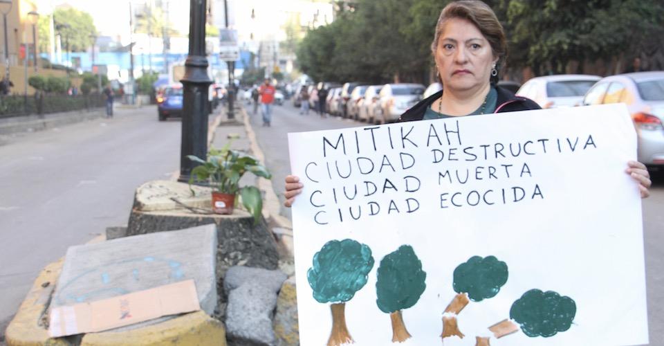 """""""Fue un ecocidio premeditado"""": vecinos del Pueblo de Xoco narran tala irregular de árboles (Ciudad de México)"""