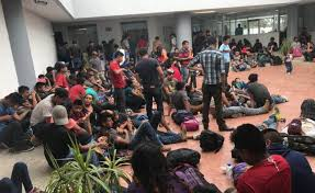 Aseguran tráileres con 287 migrantes en Tamaulipas