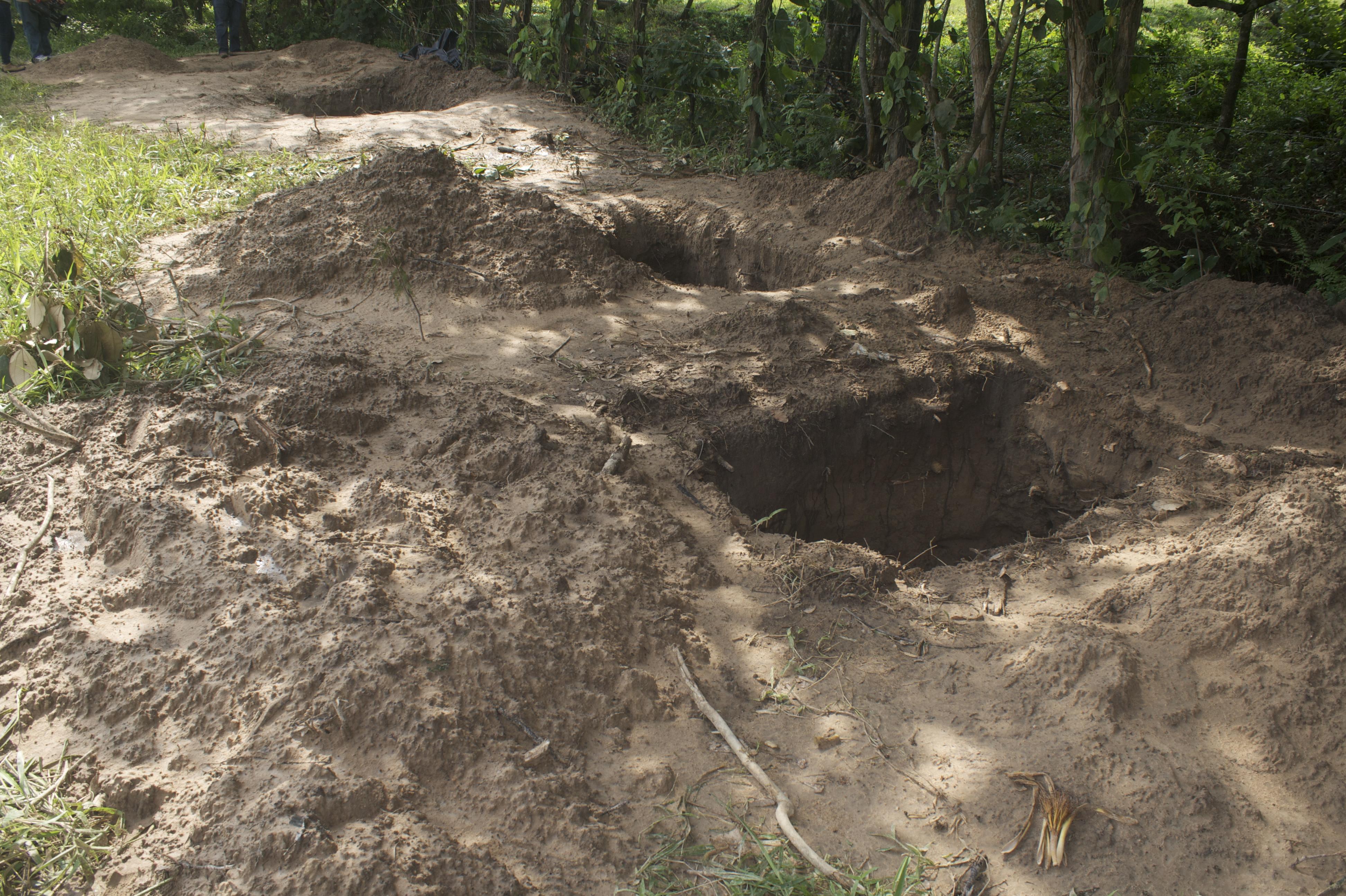 Colectivos desentierran esperanzas de fosas clandestinas en Veracruz
