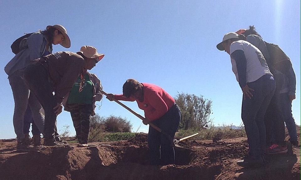 Desaparecidos en México: la historia de 'las rastreadoras' y 'guerreras' que buscan entre la tierra a sus hijos