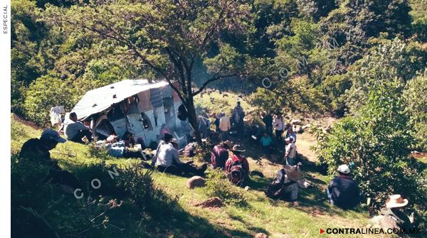 Cuatro Venados: una tragedia anunciada (Oaxaca)