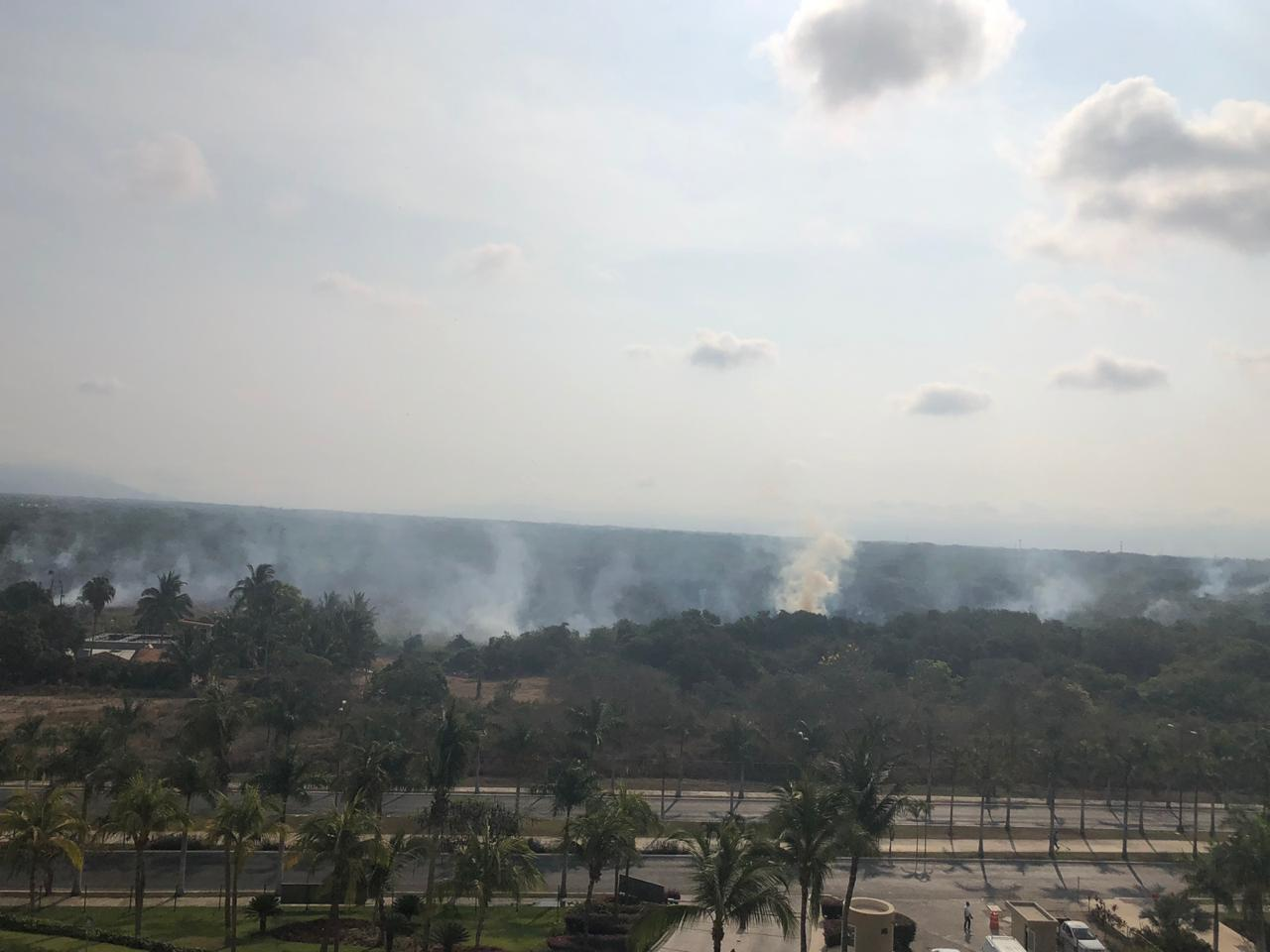 En zona de mangle: Desarrolladores incendian maleza (Nayarit)