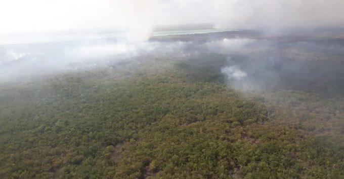 Recortes presupuestales a Conafor complican control de fuego en Sian Ka'an: Protección Civil de Q Roo