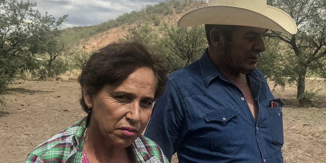 Derrame del Río Sonora: cinco años de horror