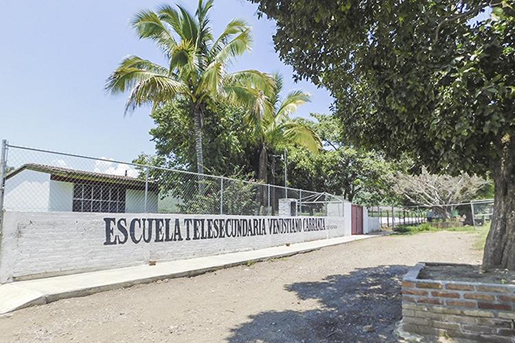 Casi 300 intoxicados por plaguicidas al año (Jalisco)