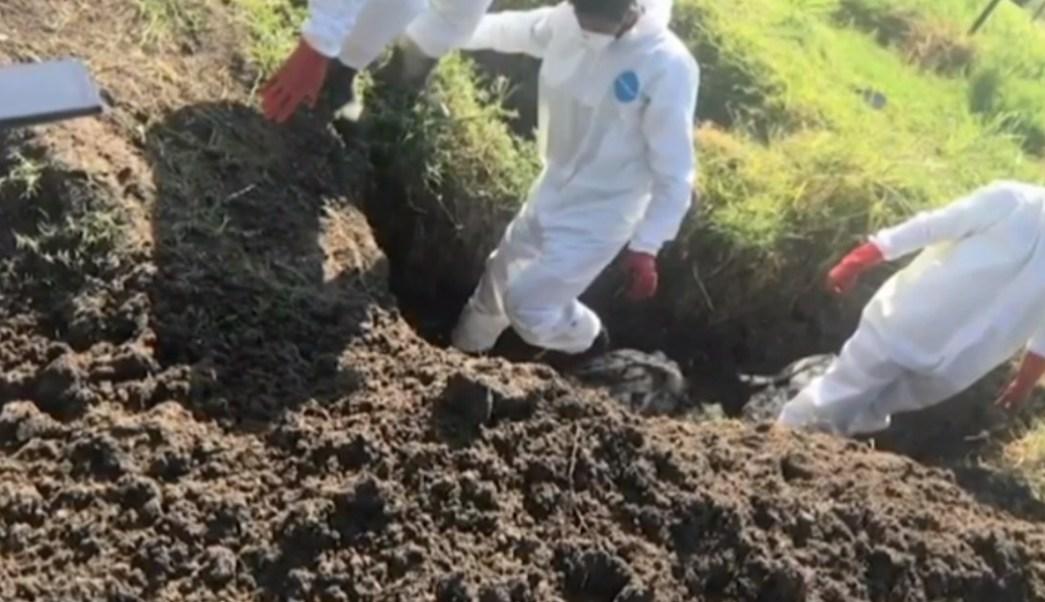 Michoacán esconde homicidios y no atiende desapariciones, denuncian activistas