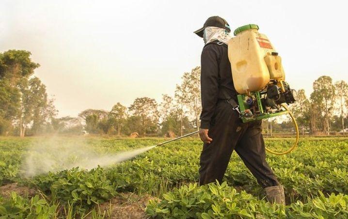 Plaguicidas principal veneno para el agua de Yucatán