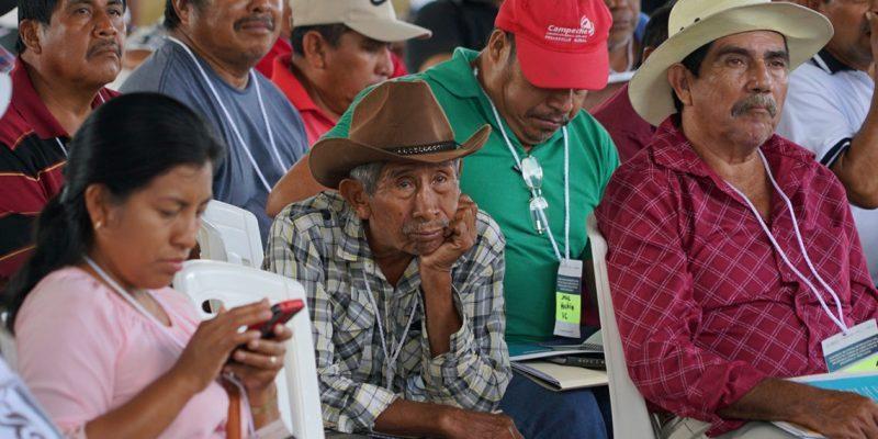 Consulta de Tren Maya: una fase informativa que no resuelve dudas