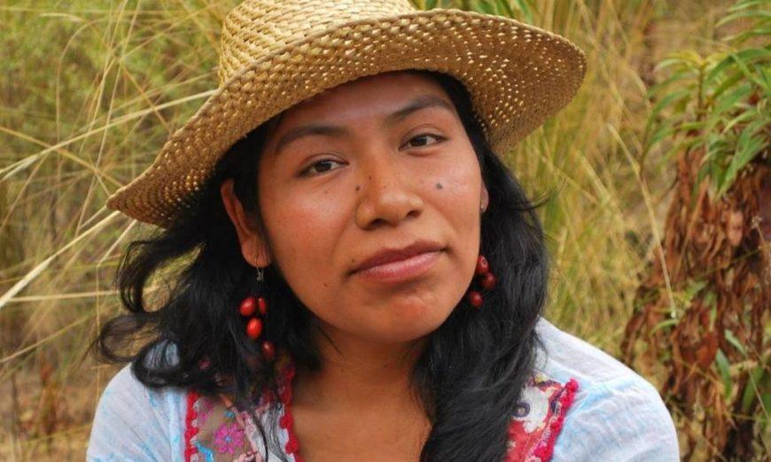 Emiten alerta tras la desaparición de la ambientalista Irma Galindo (Oaxaca)