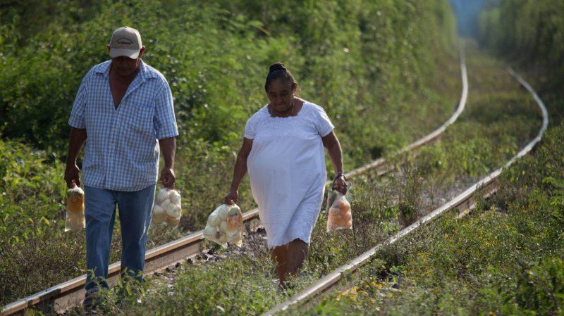 La ONU critica la parcialidad de la consulta sobre el Tren Maya, el proyecto estrella de López Obrador