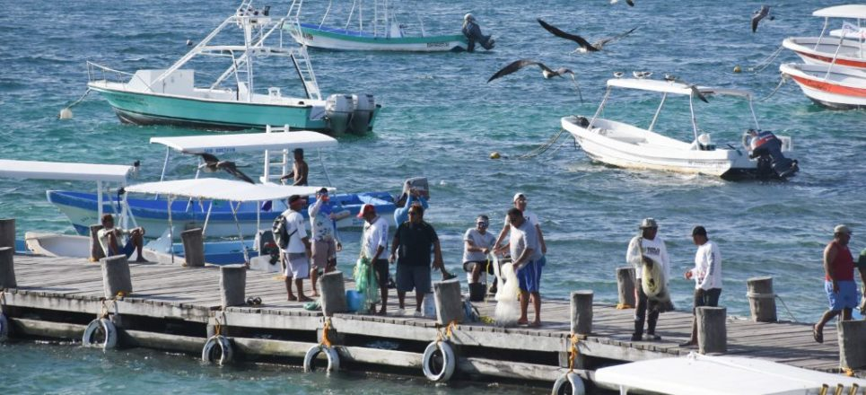 Existe riesgo de militarización de los puertos en México por iniciativa de Morena: Mesa Política