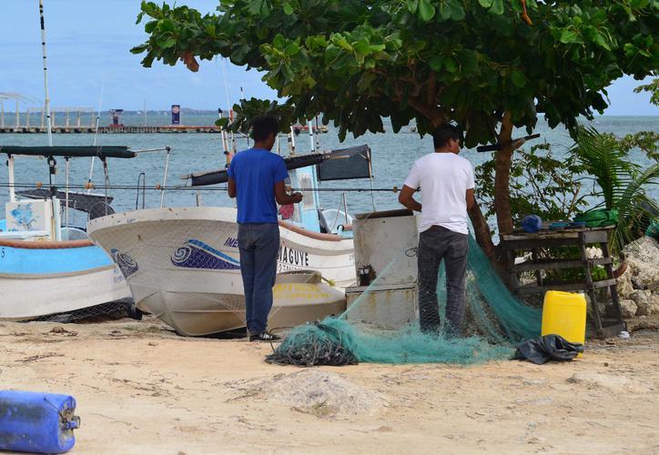"""Más de 40 mil trabajadores sobreviven con """"salarios de hambre"""" (Quintana Roo)"""