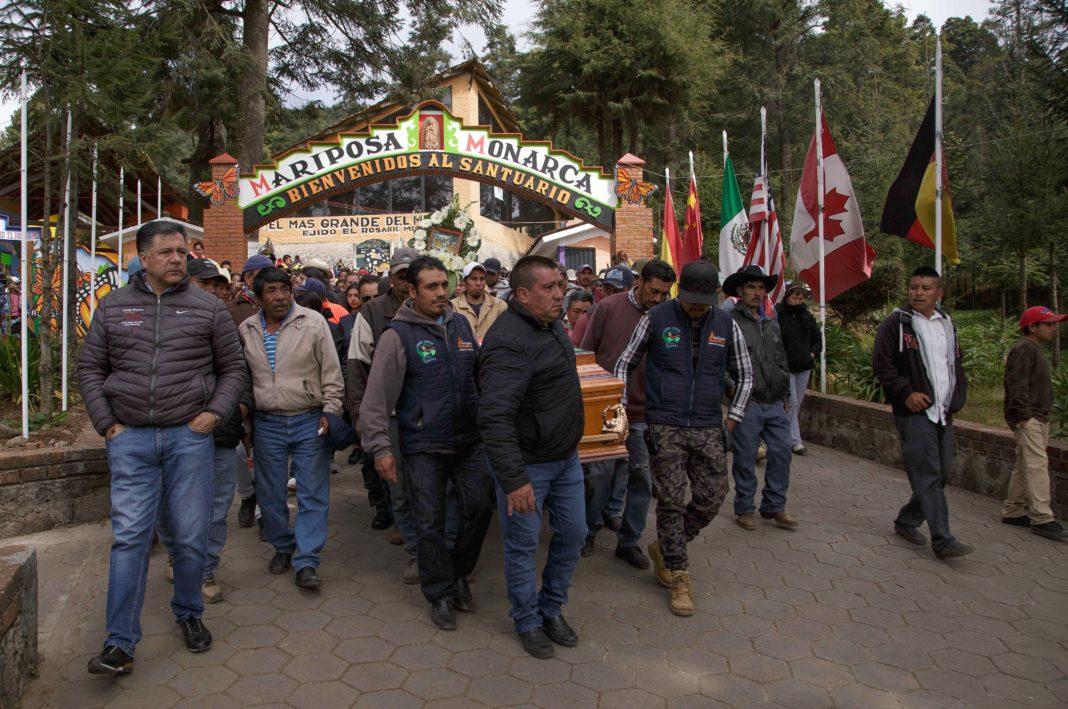 De manera impune persiste violencia contra ambientalistas en México (Michoacán, Nacional)