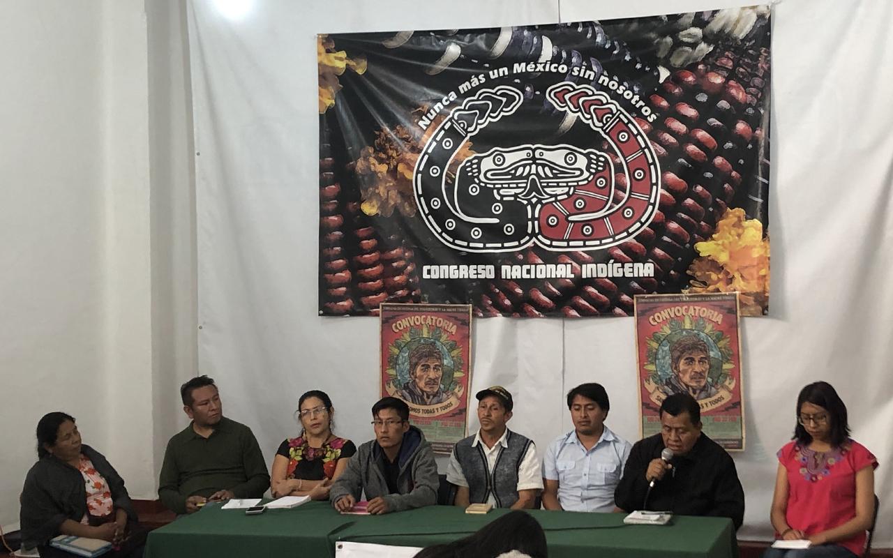 Denuncian violación del proceso en suspensión del Tren Maya