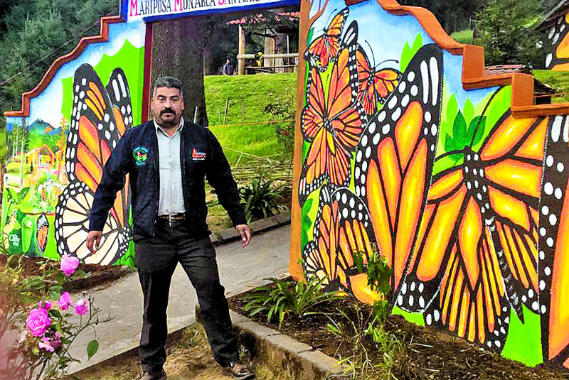 Alertan mayor violencia contra ambientalistas (Michoacán)