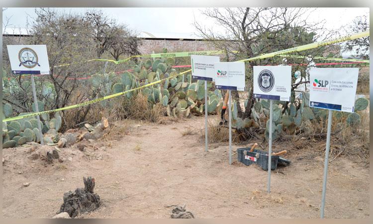 Encuentran fosas clandestinas en Moctezuma, San Luis Potosí