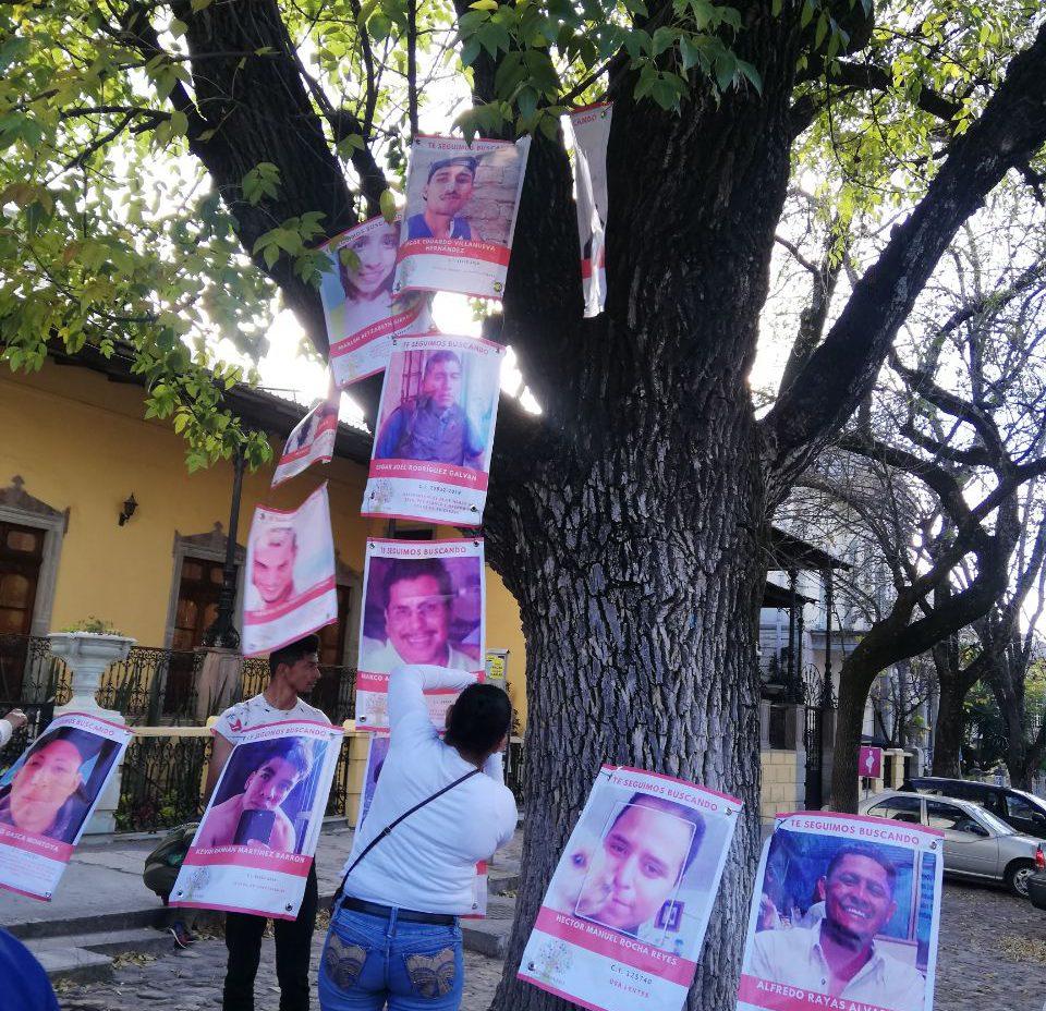 Colectivos de búsqueda de personas no pararán durante contingencia sanitaria (Guanajauato)