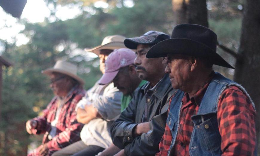 Meseta purépecha: la violación sistemática a derechos de indígena (Michoacán)