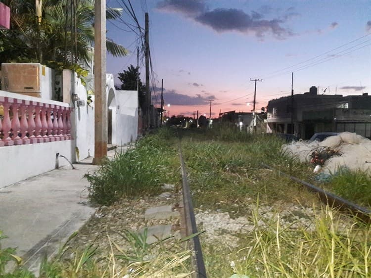 Tren Maya: con engaños y acoso buscan desalojar a familias de Campeche