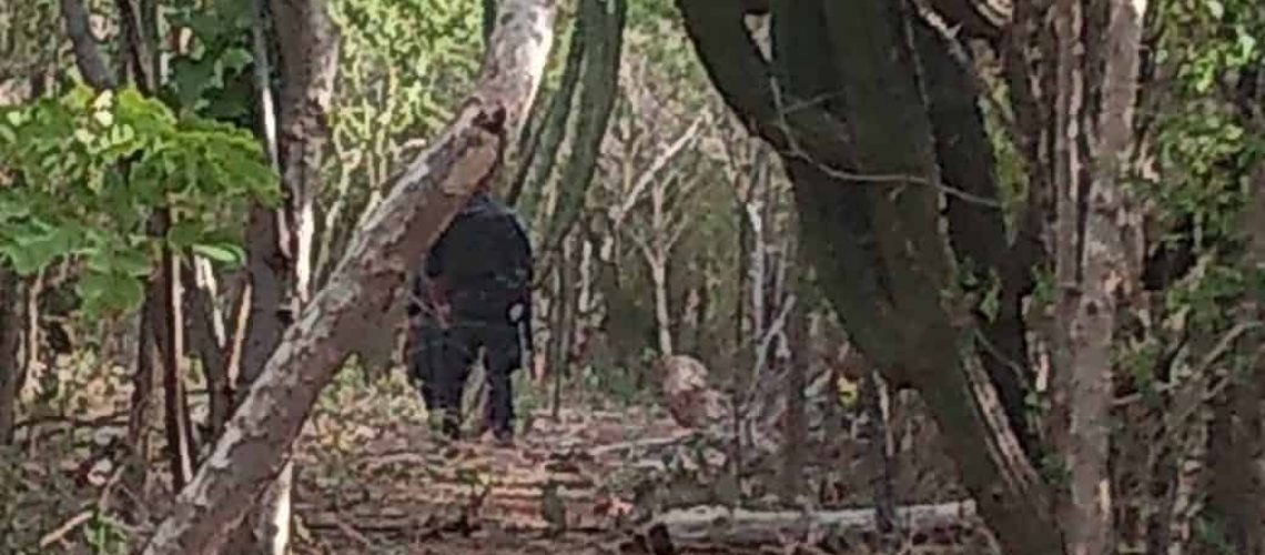 'Rastreadoras' localizan huesos humanos cerca de San Blas (Sinaloa)