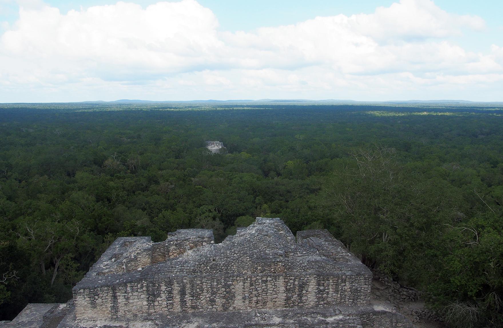 Los rostros (no tan) ocultos del mal llamado tren maya. Parte 6: Agravar un colapso ambiental que ya está ocurriendo.