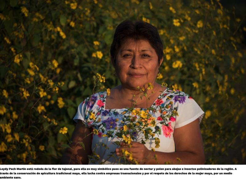 """""""Los pueblos indígenas tenemos una forma distinta de mirar el desarrollo"""": Leydy Pech"""