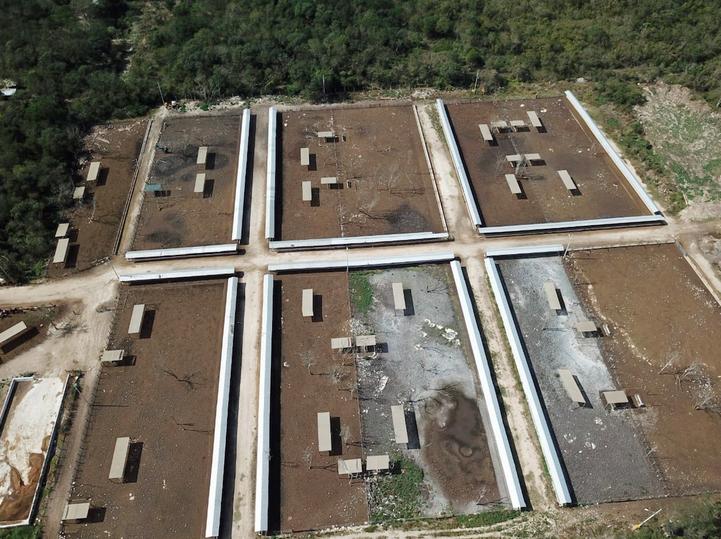 Juzgado deja impune daño ambiental provocado por megagranja (Yucatán)