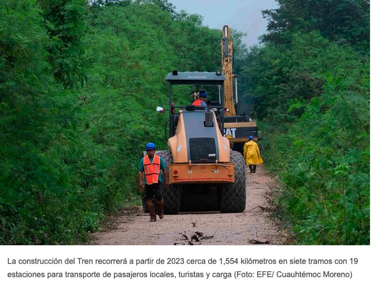 Ecocidios, el latente riesgo ambiental del Tren Maya en el sureste mexicano