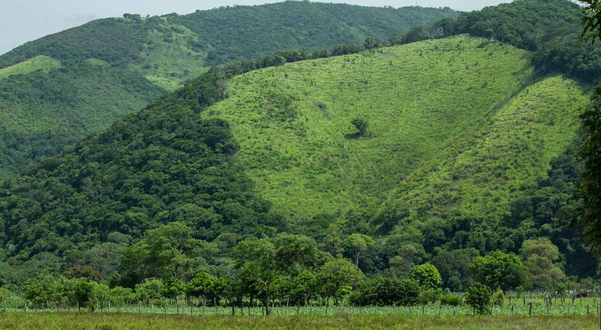 Todo el territorio de Chimalapas en riesgo ante proyectos mineros (Oaxaca)