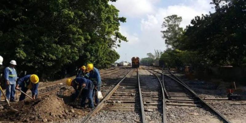 """""""Son proyectos que no están siendo consultados"""": Por Tren Maya, se harían 10 parques solares; activistas de Yucatán no quieren más despojo de tierras"""