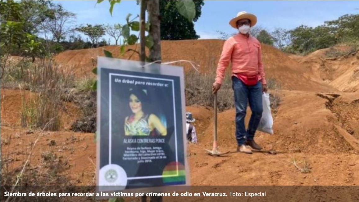 Siembran árboles en memoria de activista y 18 asesinados en Veracruz