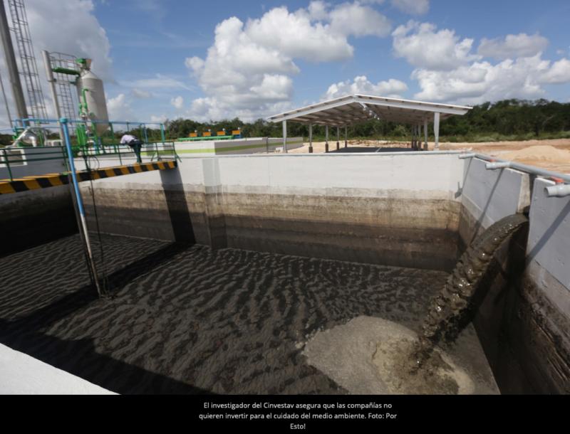 Empresa porcícola disfraza daño ambiental en Chapab (Yucatán)