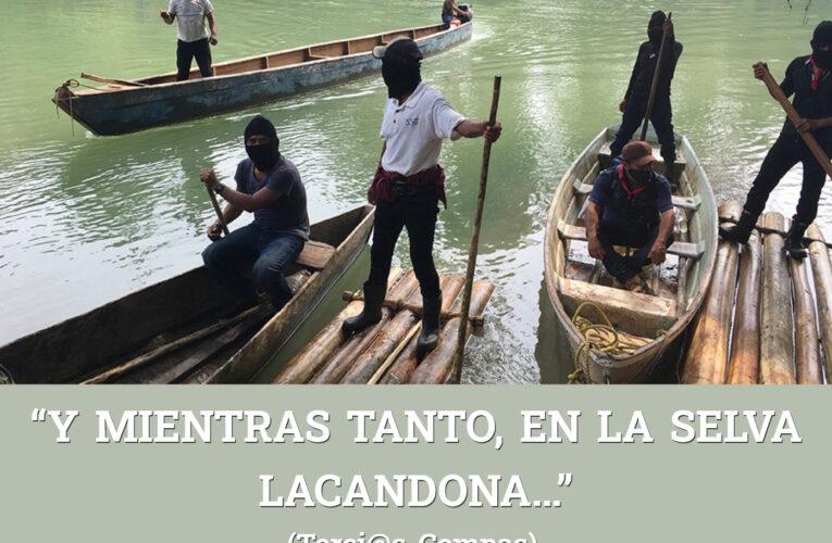 """""""Y MIENTRAS TANTO, EN LA SELVA LACANDONA…"""" (Terci@s Compas)."""