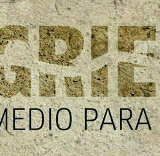 En Veracruz se incrementaron ataques contra ambientalistas en 2020: CEMDA