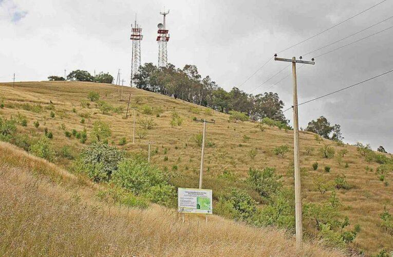 Ambientalistas denuncian agresiones por presuntos dueños del Crestón, les impiden reforestar (Oaxaca)