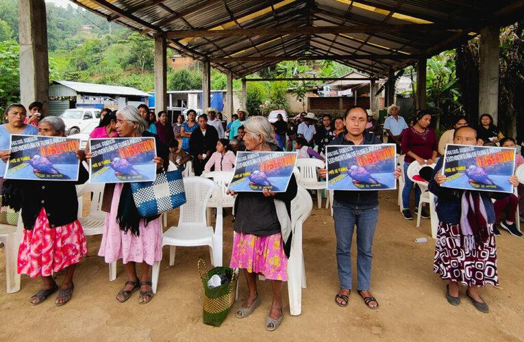 Resistir ante el Estado, los caciques viejos y nuevos en la mazateca (Oaxaca)