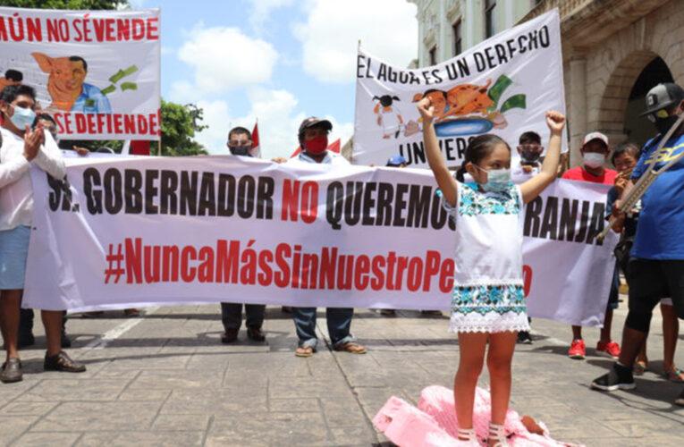 Niñas y niños inician campaña contra granja porcina en Homún, Yucatán