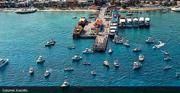El cuarto muelle de Cozumel: En ciernes, ecocidio de arrecifes (Quintana Roo)