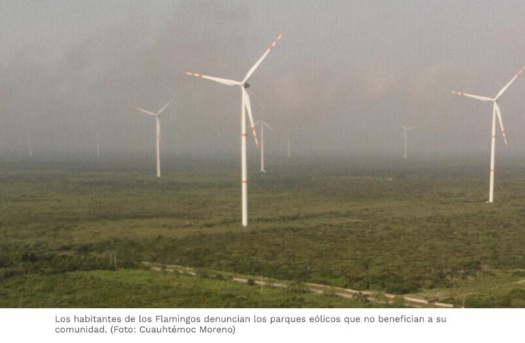 Los parques eólicos de Yucatán benefician a las grandes empresas