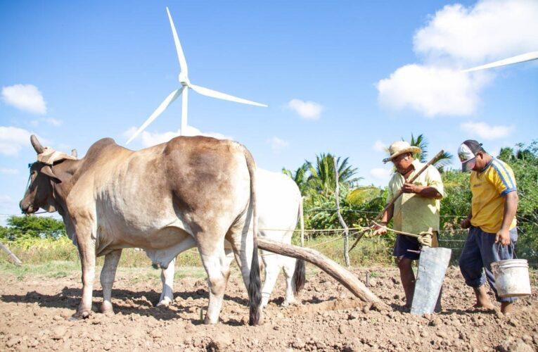 Comuneros de Juchitán logran victoria contra la francesa EDF
